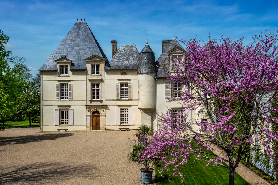 Tendance oenologie château haut-brion