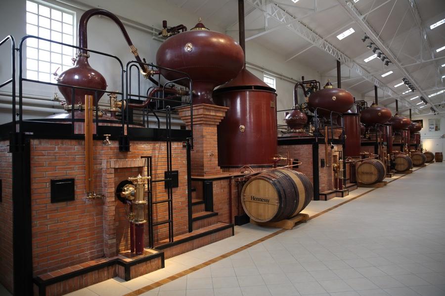 Oenologie Plongez au coeur du savoir faire de la maison Hennessy